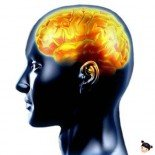 Воздействие на мозг