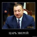 Алиева заподозрили в попытке установить «монархию» через референдум