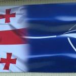 По пути в НАТО: интересы США и Грузии разошлись