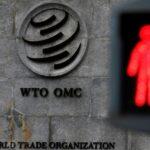 Новый глава Всемирной торговой организации будет продвигать повестку Билла Гейтса