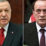 «Коронавирусная» амнистия: зачем Эрдоган освободил боссов мафии